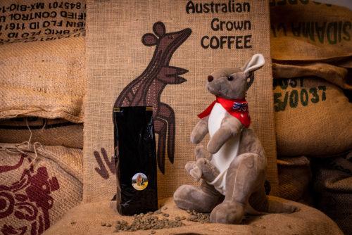 café Skybury d'Australie des torréfacteurs Français